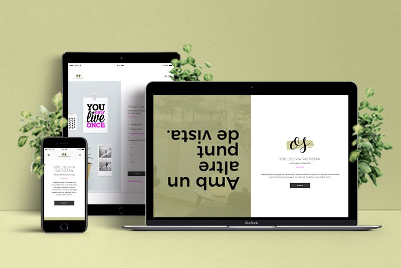 web wordpress profesional en tarragona