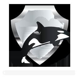 Fundacion para conservacion orcas diseño web
